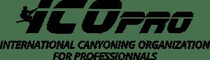 Logo ICOpro